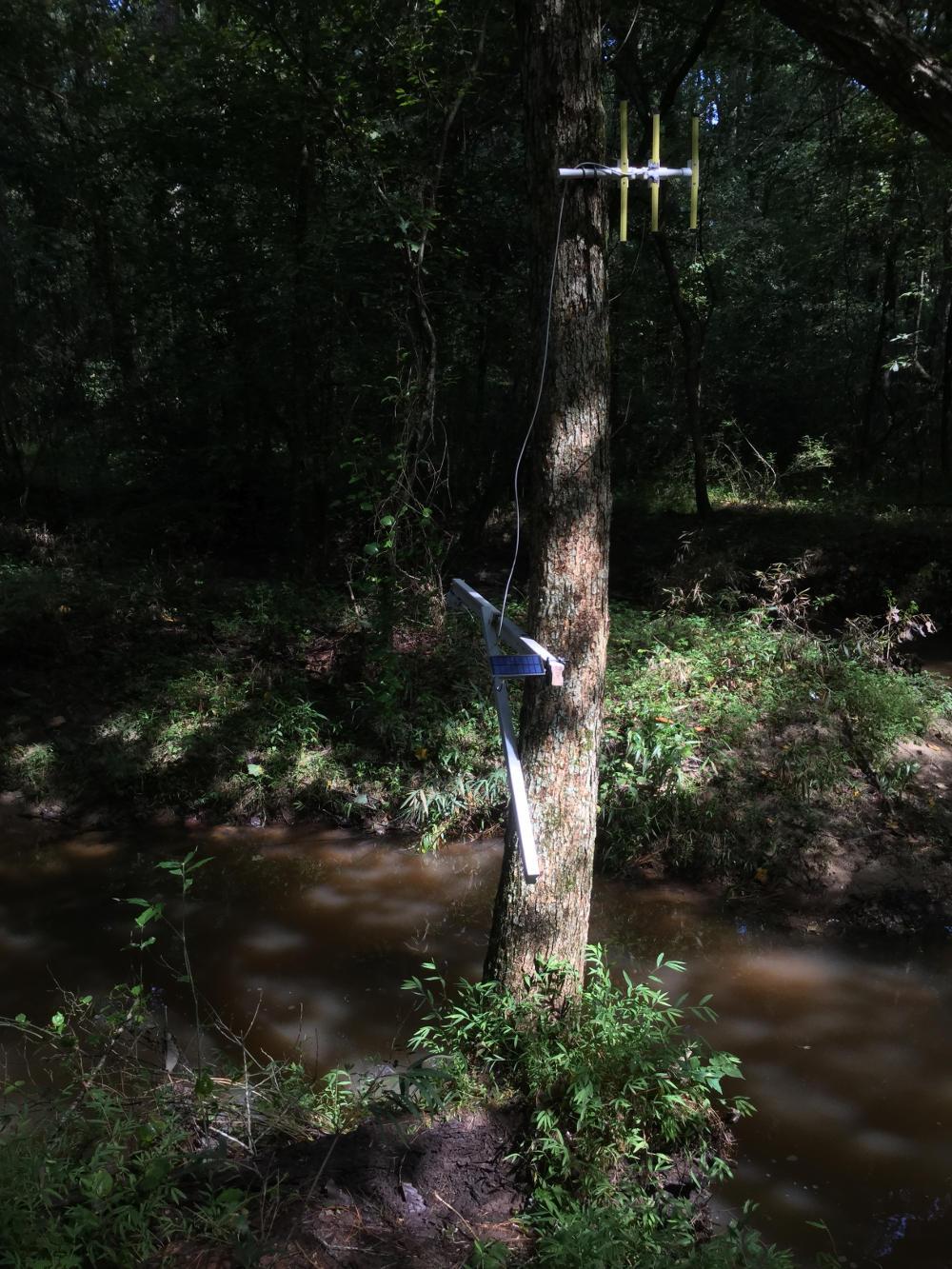 creek-4